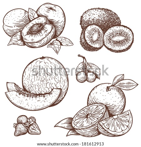 vector set of engraving illustration of sweet fruits and berries - stock vector