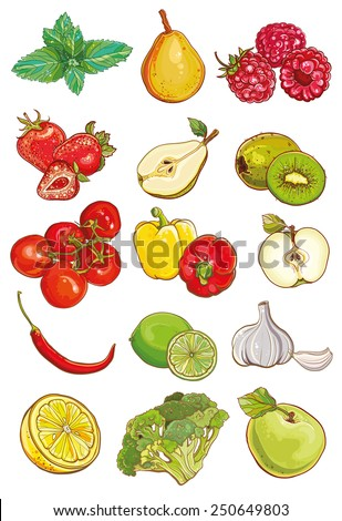 Vector set of fresh vegetables; fruits and berries. Apple; kiwi; strawberry; raspberry; pear; lemon; lime; mint; tomatoes; peppers; chili; garlic; broccoli. eps 10 - stock vector