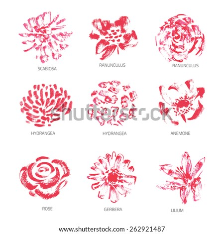 Vector Set of Grunge or Watercolor Flowers - EPS10 - stock vector