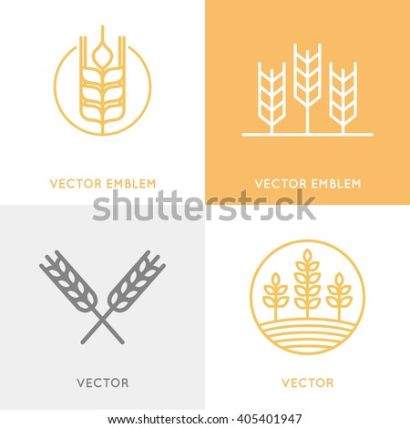 Vector set of logo design templates in trendy linear style - wheat and grain graphics for bakery emblems - stock vector