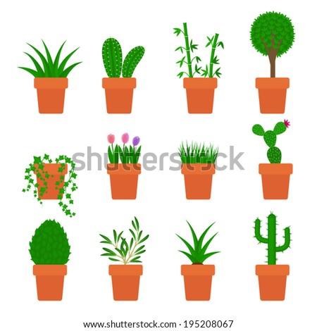 vector set of plants in pots - stock vector