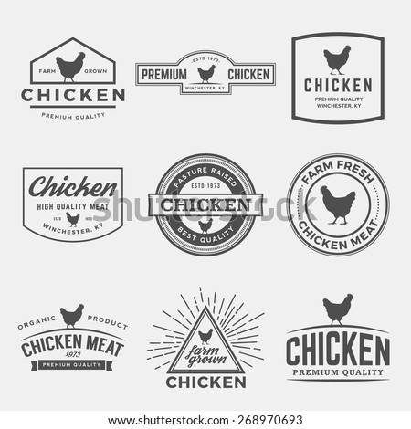 vector set of premium chicken meat labels, badges and design elements - stock vector