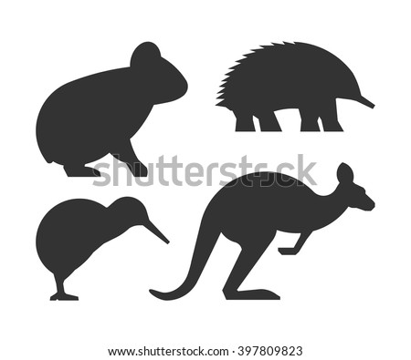 Echidna Stock Photos, Images, & Pictures | Shutterstock