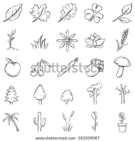 Vector Set of Sketch Plants Icons - stock vector