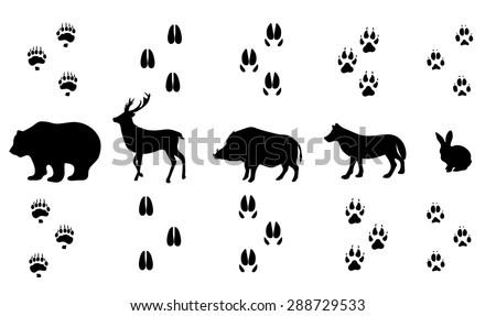 Vector set of walking wild wood animal tracks - stock vector