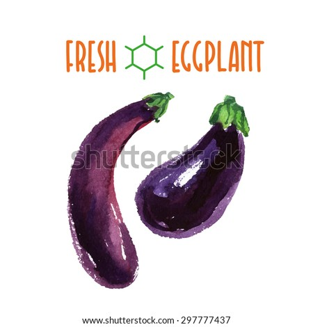 Vector set of watercolor eggplant elements on white background. Cute illustration is good for magazine or book, poster and card design, menu cover. - stock vector