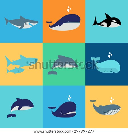 Vector set of whale, dolphin and shark icons. Grampus and fountain, underwater and nature - stock vector