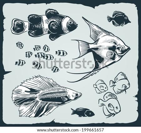 Vector set: vintage illustration of fish over blue background - stock vector