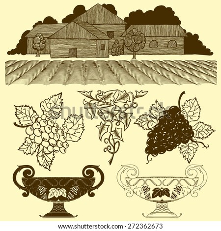 Vector Set: Vintage Wine Label Elements, Orchard, Grapes, Vines and Cups - stock vector
