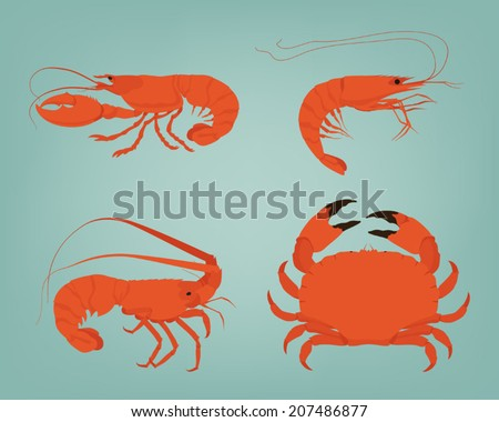 Vector shrimp, lobster, crab and spiny lobster  on simple background - stock vector