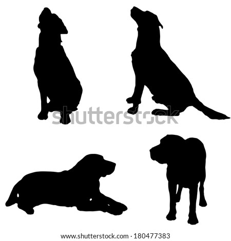 Vector silhouette of a dog on white background. - stock vector
