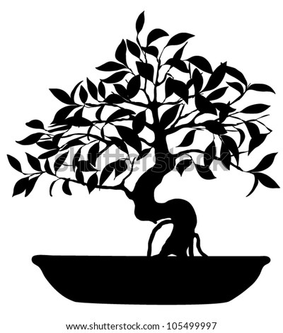 Vector Silhouette of bonsai tree isolated on white background - stock vector