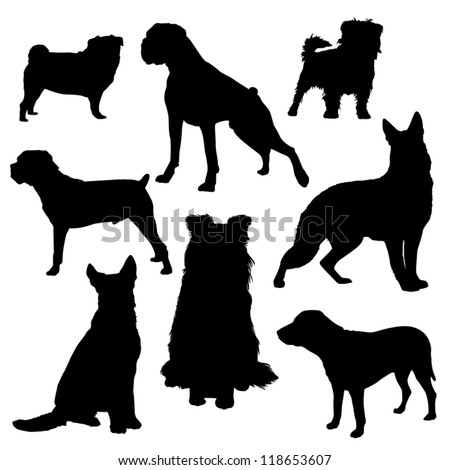 Vector silhouettes of dogs of different breeds isolated on a white background/Dog - stock vector
