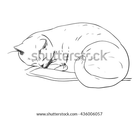 Vector sketch of cat on a pillow. Hand draw illustration. - stock vector
