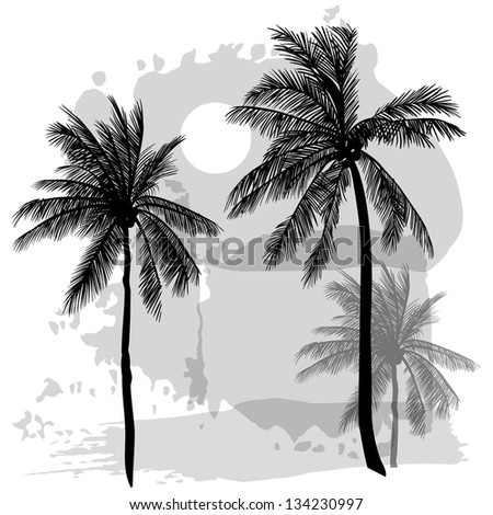 Vector sketch with palms - stock vector
