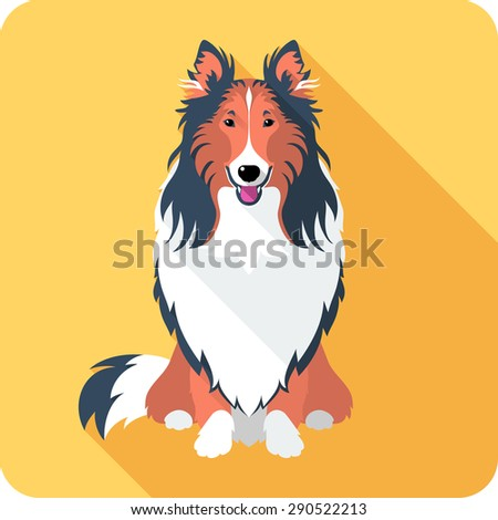 Vector smiling dog Rough collie red and black sitting icon flat design  - stock vector