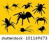 vector  spiders silhouette - stock vector