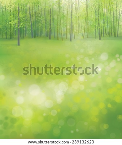Vector spring  forest background. - stock vector