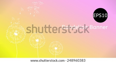 Vector summer or spring background, banner with dandelion - stock vector