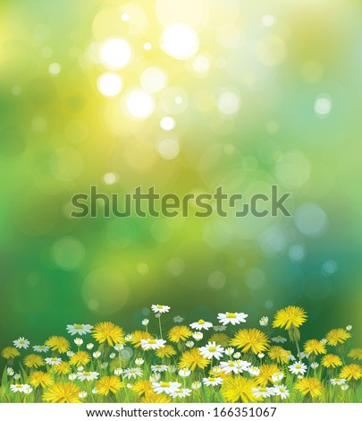 Vector sunshine background with chamomiles and dandelions. - stock vector