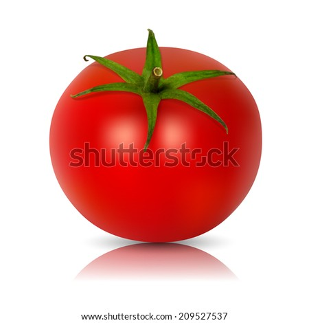 Vector tomato  - isolated  on white background - stock vector
