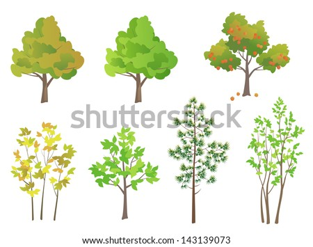 Vector trees - design elements - stock vector