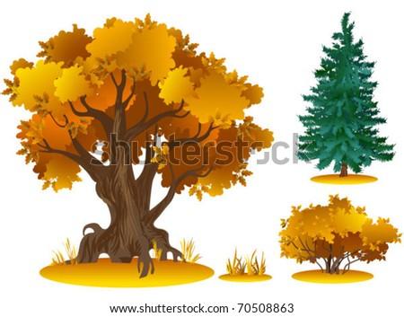 vector trees series (in summer, autumn, spring, winter) - stock vector