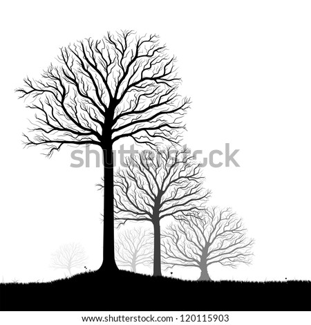 Vector trees silhouette, flowers and grass, black and white vectorial shape, fog at the background - stock vector