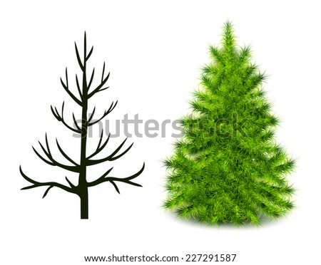 Vector trees trunk and branched green Christmas tree isolated on white - stock vector