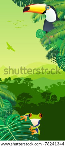 Vector tropical frog and Toucan in Rainforest - stock vector