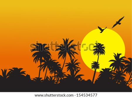 vector tropical sunset with silhouette birds and trees - stock vector
