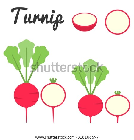 Vector turnip,flat design - stock vector