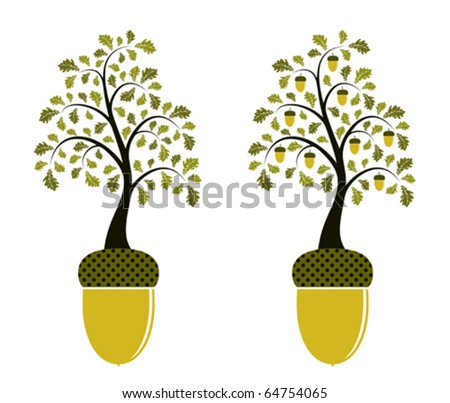 vector two versions of oak growing from acorn on white background - stock vector