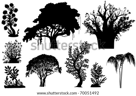 vector - various African trees and bushes - stock vector