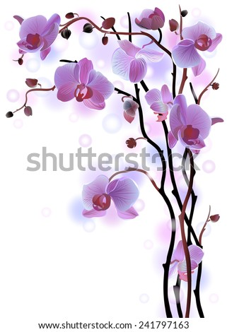 Vector vertical greeting card with violet gentle orchid brunches on the white background - stock vector