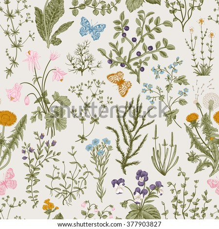 Vector vintage seamless floral pattern. Herbs and wild flowers. Botanical Illustration engraving style. Colorful - stock vector