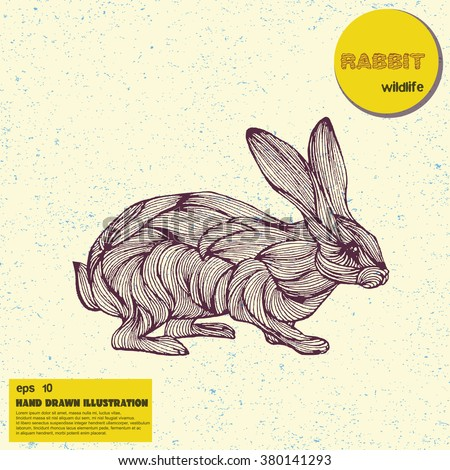 Vector vintage sketch of rabbit. Hand drawn illustration in line art style. Hand drawn rabbit engraving tattoo. - stock vector