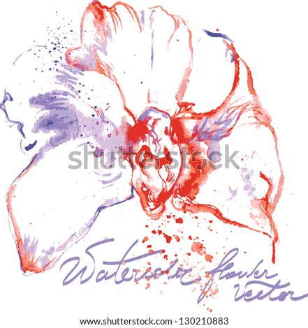 Vector water color orchid - stock vector