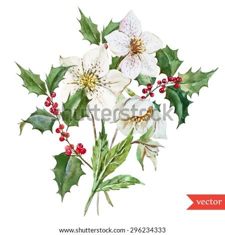 vector watercolor botanical drawing christmas white