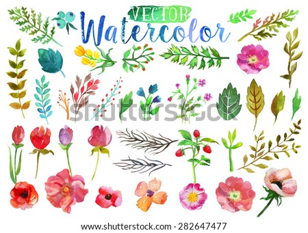 Vector watercolor hand drawn colorful flowers, leaves and horns. The art paint on white background - stock vector