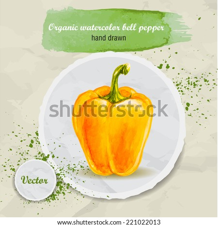 Vector watercolor hand drawn yellow bell pepper on round paper piece with watercolor drops. Organic food illustration. - stock vector