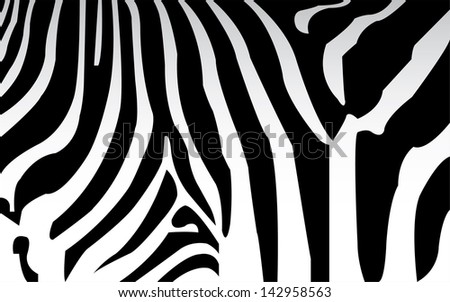 vector - zebra texture Black and White - stock vector