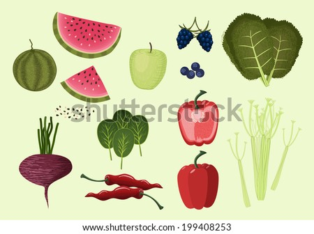 Vegetables and fruits. Green, vegetarian and healthy food. Apple, watermelon, blueberry, blackberry, kale, red hot pepper; sweet pepper; beetroot; celery; spinach. - stock vector