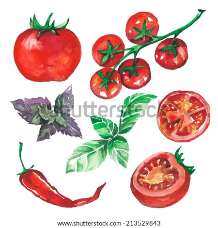 vegetables set drawn watercolor blots and stains with tomatoes, pepper, basil - stock vector