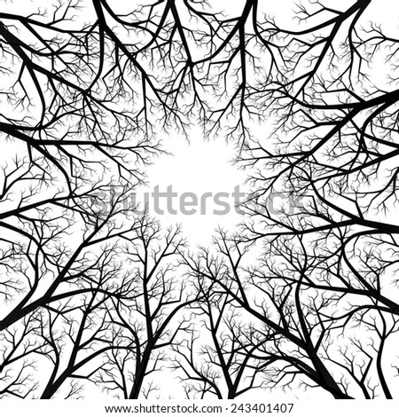 view of the sky through the branches of trees - stock vector