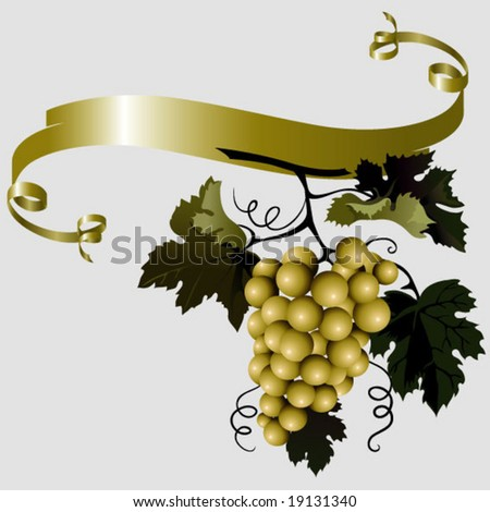 vine branch illustration - stock vector