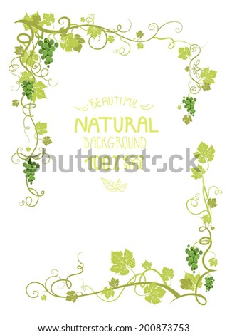 Vineyard frame with green ripe grape. Place for text. - stock vector