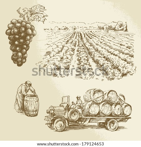 vineyard, harvest, farm - hand drawn collection - stock vector