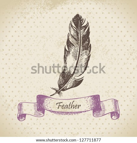 Vintage background with feather. Hand drawn illustration - stock vector