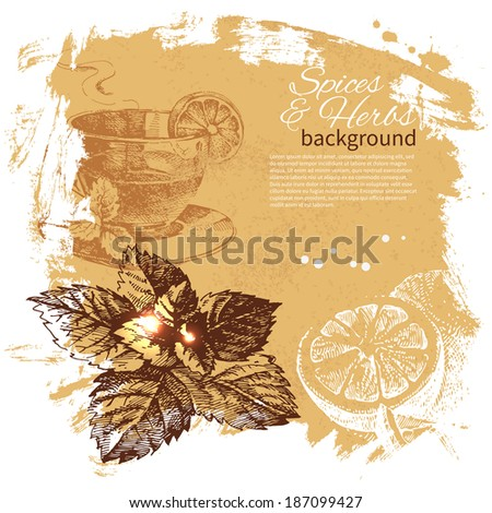 Vintage background with hand drawn sketch herbs and spices. Menu design - stock vector